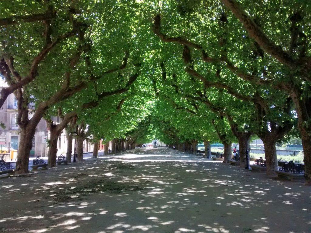 Pilgern für Anfänger | Tag 11 | Pontevedra bis Padrón